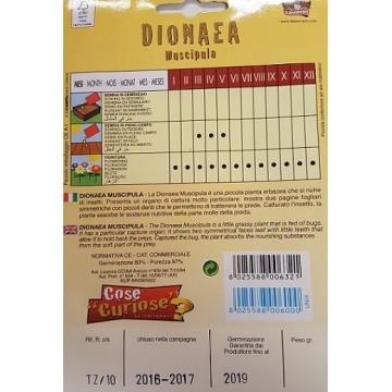 Dionaea Muscipola