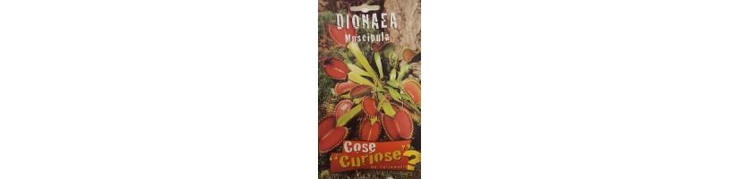 Semenze Rare, Particolari e Curiose - Garden West GrowShop Milano
